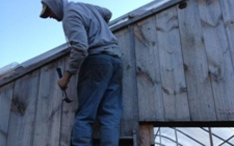 Adam doing greenhouse repairs.